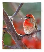 Winter Red Fleece Blanket