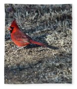 Winter Redbird Fleece Blanket