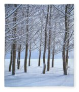 Winter Sentinels Fleece Blanket