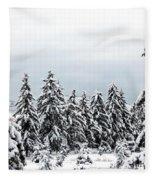 Winter Shangri-la Fleece Blanket
