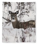 Winter Slumber Fleece Blanket