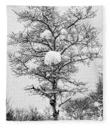 Winter Solace Fleece Blanket