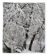 Winter Storm Skylar Fleece Blanket