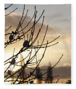 Winter Sun 3 Fleece Blanket