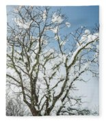 Winter Tree At Berry Summit Fleece Blanket