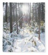 Winter Under The Sun Fleece Blanket