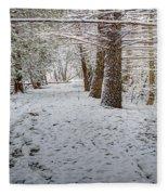 Winter Wonder Land Fleece Blanket