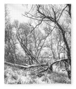 Winter Woods On A Stormy Day 2 Bw Fleece Blanket