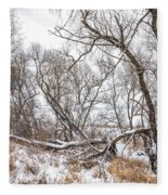 Winter Woods On A Stormy Day 2 Fleece Blanket