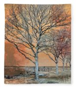 Winter's Dawn Fleece Blanket