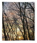 Winter's Delight Fleece Blanket