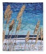 Wintertime On Lake Erie Fleece Blanket