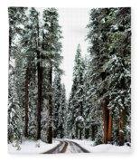 Wintry Forest Drive Fleece Blanket