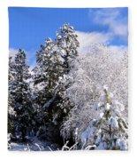 Wintry Morn Fleece Blanket