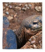 Wise Old Tortoise Fleece Blanket