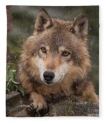 Wolf Face Fleece Blanket