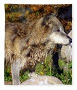 Wolf On Patorl Fleece Blanket