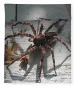 Wolf Spider Sunlight Fleece Blanket