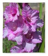 Wonderful Pink Gladiolus Fleece Blanket