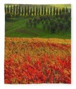 Wonderful Tuscany, Italy - 07  Fleece Blanket