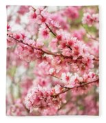 Wonderfully Delicate Pink Cherry Blossoms At Canberra's Floriade Fleece Blanket