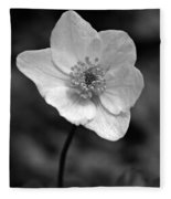 Wood Anemone 6 Fleece Blanket