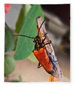 Wood Beetle Exploring Fleece Blanket