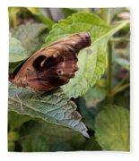 Wood Butterfly Fleece Blanket