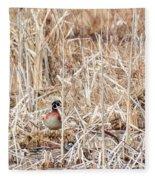 Wood Duck Mates 2018 Fleece Blanket