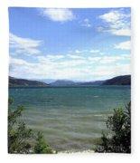 Wood Lake In Summer Fleece Blanket