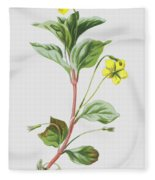 Wood Loosestrife Fleece Blanket