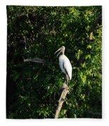 Wood Stork-out On A Limb Fleece Blanket