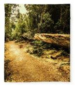 Woodland Nature Walk Fleece Blanket
