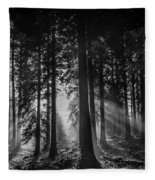 Woodland Walks Silver Rays B/w Fleece Blanket