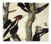 Woodpecker Fleece Blanket