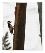 Woodpecker Workshop  Fleece Blanket