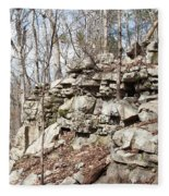 Woods Of Lake Guntersville Fleece Blanket