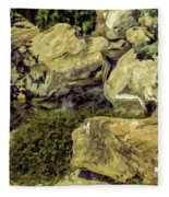 Woodward Park 2016 V1 Fleece Blanket