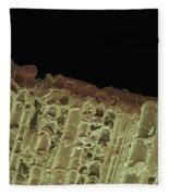 Woodwind Reed, Sem Fleece Blanket