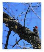 Woody Woodpecker Fleece Blanket