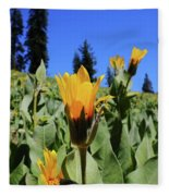 Woolly Mule's-ear At Lassen Park Fleece Blanket