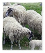 Wooly Times Fleece Blanket