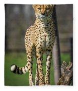 World's Fastest Land Animal Fleece Blanket