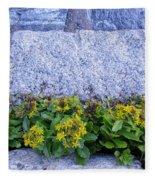 Written In Stone Fleece Blanket