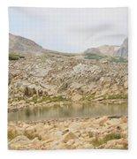 Wyoming At Altitude 4 Fleece Blanket