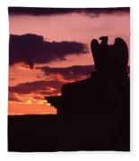 Wyoming Valley On My Mind... Fleece Blanket