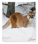 Wyoming Wild Cat Fleece Blanket
