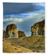 Wyoming Xi Fleece Blanket