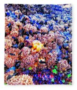 Yachats Oregon - Low Tide Treasures Fleece Blanket