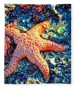 Yachats Oregon - Sea Star Fleece Blanket